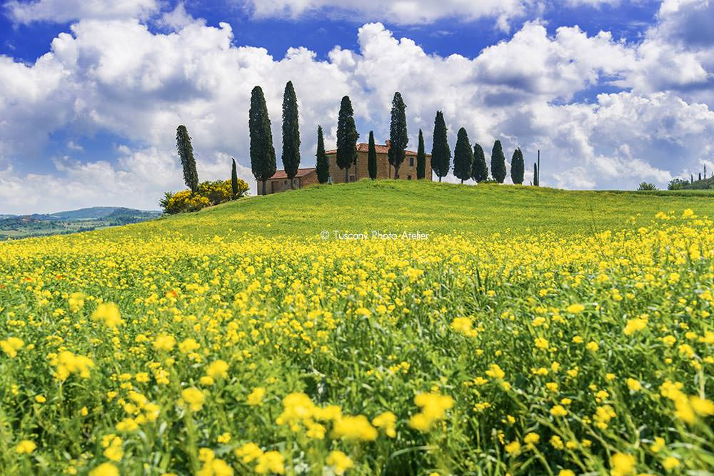 Pienza in Val d'Orcia