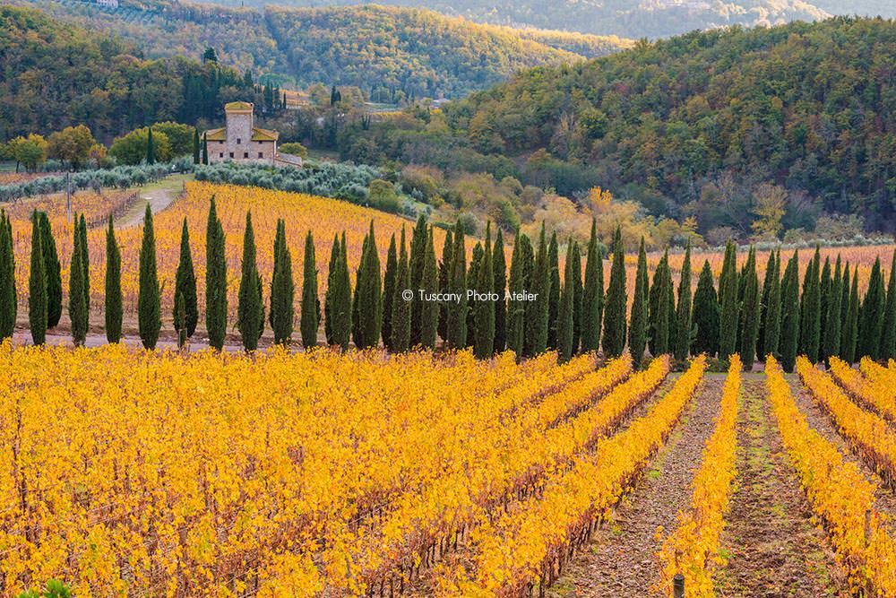 What to see in Tuscany: Chianti