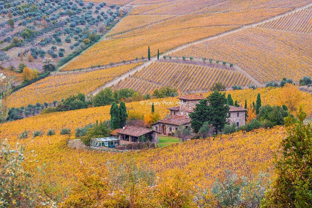 Chianti senese and fiorentino